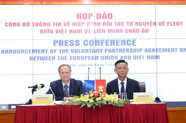 Vietnam-UE: Le processus de ratification et d'approbation du VPA/FLEGT s'acheve hinh anh 1