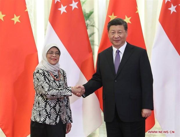 La Chine booste la cooperation avec Singapour hinh anh 1