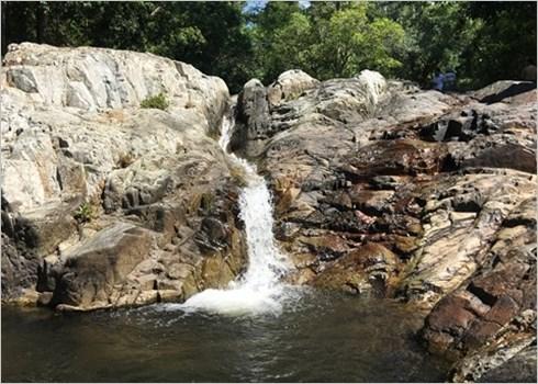 Depart en safari au Parc national de Phuoc Binh, dans le Centre hinh anh 3