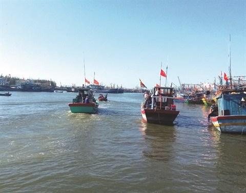 Peche INN: le Vietnam s'emploie a retrouver la carte verte hinh anh 1
