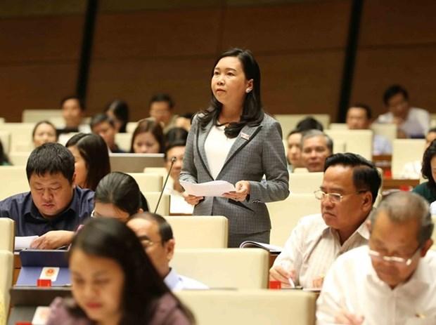 L'AN discute des rapports sur les plans socio-economiques de 2018 et 2019 hinh anh 1