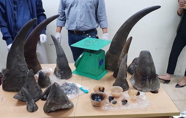Un atelier veut elargir le reseau de journalistes de la faune au Vietnam hinh anh 1