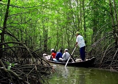 Lutter contre l'erosion de la biodiversite au Vietnam hinh anh 1