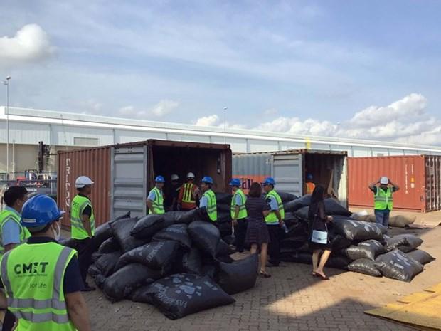 Grosse saisie de plus de 5 tonnes d'ecailles de pangolin au Sud hinh anh 1