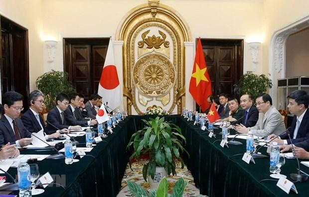 Le Vietnam et le Japon veulent renforcer leur partenariat strategique etendu hinh anh 1
