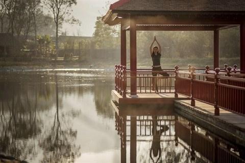 Le tourisme du bien-etre en vogue au Vietnam hinh anh 1