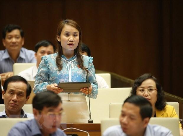 Les deputes participent activement a la session de questions - reponses hinh anh 1