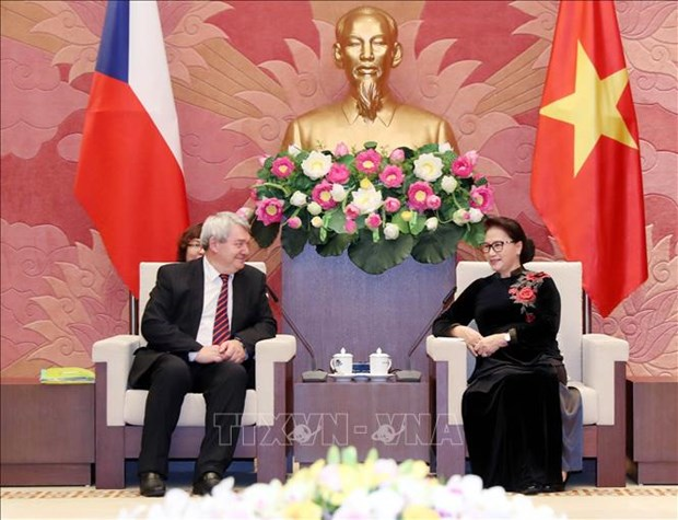 Pour approfondir les relations parlementaires Vietnam-R. tcheque hinh anh 1