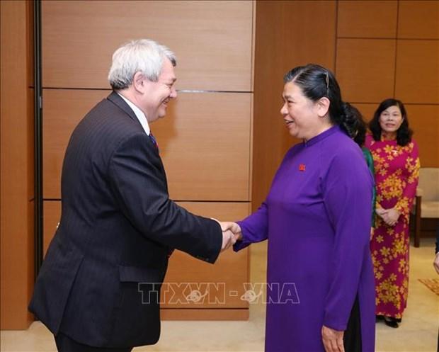 Vietnam et R. tcheque promeuvent leur cooperation dans le commerce et l'investissement hinh anh 1