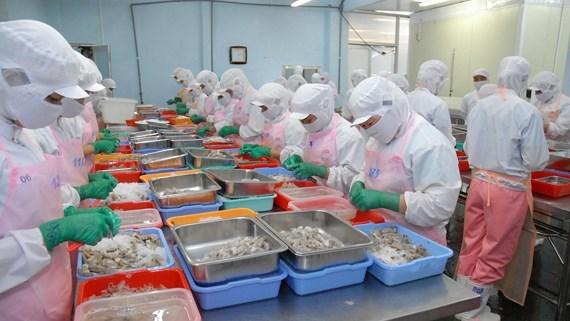 Renforcer la presence des produits vietnamiens sur le marche russe hinh anh 1