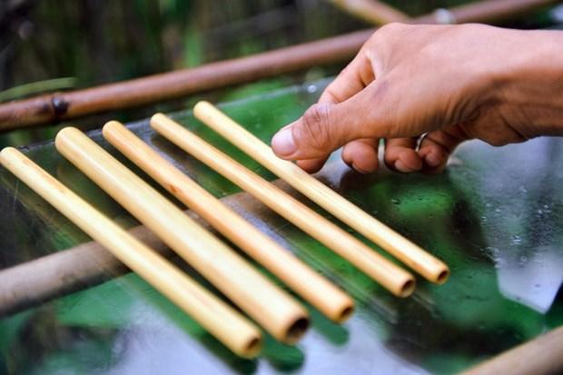 Tran Minh Tien : la passion de l'ecologie hinh anh 2