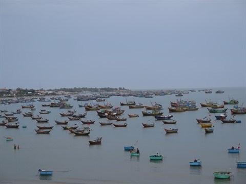 Ressources maritimes: durcissement de la legislation a l'encontre de l'exploitation illegale hinh anh 1