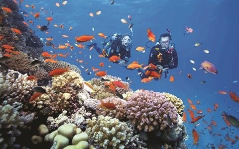 Khanh Hoa met le cap sur le tourisme maritime hinh anh 2