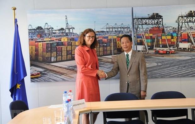 L'EVFTA assure l'equilibre des interets du Vietnam et de l'UE hinh anh 1
