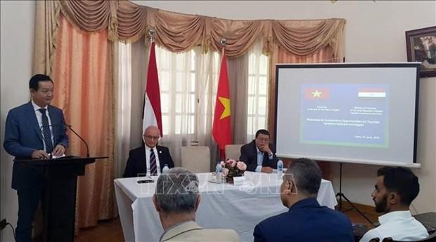 Promotion de la cooperation touristique Vietnam - Egypte hinh anh 1