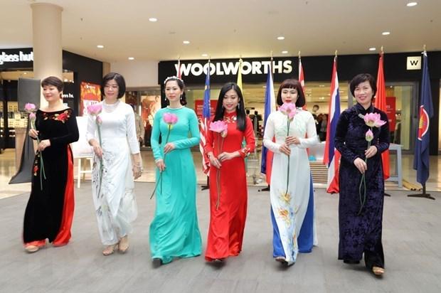 Le Vietnam contribue activement au Festival de l'ASEAN en Afrique du Sud hinh anh 2