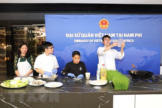 Le Vietnam contribue activement au Festival de l'ASEAN en Afrique du Sud hinh anh 1