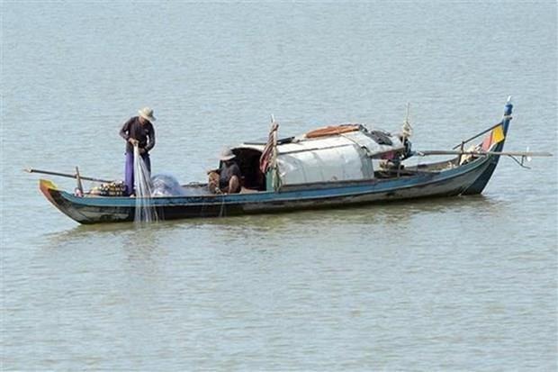 Promouvoir la cooperation pour proteger le Mekong hinh anh 1