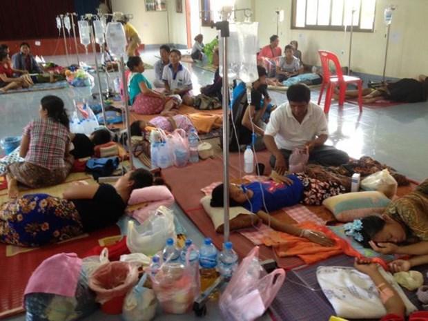 Le Laos fait face a l'epidemie actuelle de dengue hinh anh 1