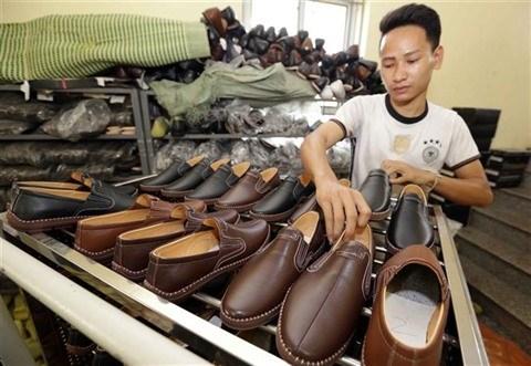 Accord de libre-echange, une aubaine pour le secteur des chaussures hinh anh 1