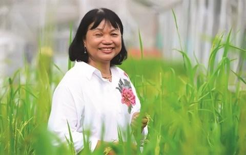 Une scientifique porteuse d'espoir de faire pousser le riz dans l'eau salee hinh anh 1