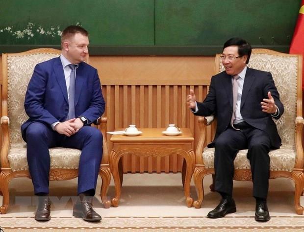 Le vice-PM et ministre des AE Pham Binh Minh recoit une delegation russe hinh anh 1