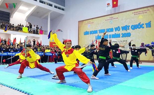 Le 2e Festival international des arts martiaux commence a Binh Dinh hinh anh 1