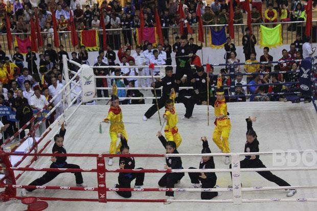 Le 2e Festival international des arts martiaux commence a Binh Dinh hinh anh 3