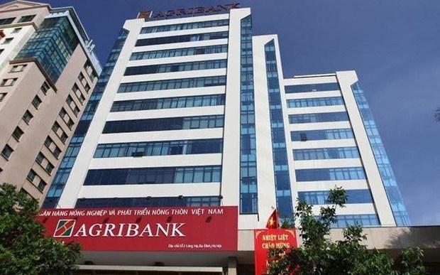 Agribank figure parmi les 10 plus grandes banques vietnamiennes hinh anh 1