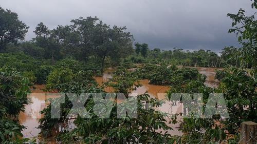 Les inondations font 5 morts dans la province de Dak Nong hinh anh 1