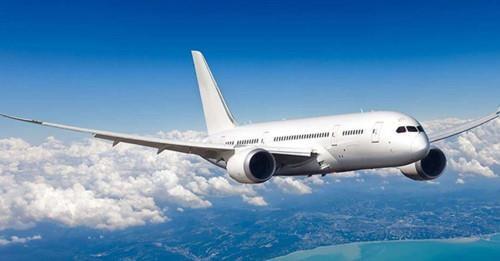 Bientot le premier salon de l'aviation au Vietnam hinh anh 1