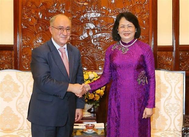 La vice-presidente vietnamienne recoit un officiel allemand de l'education hinh anh 1
