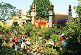 Dans le village de Vi Khe, la vie au rythme des bonsais hinh anh 1