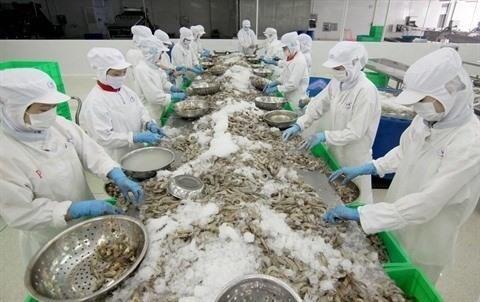 Les exportateurs de crevette beneficient des droits de douane nuls hinh anh 1