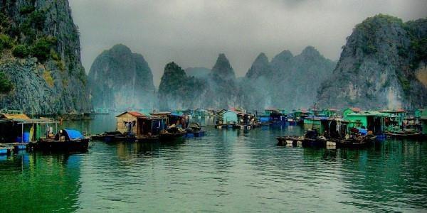 De nouvelles sirenes de la baie de Ha Long hinh anh 2