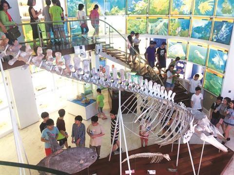 "Le musee de Quang Ninh, la ""perle noire"" de la baie de Ha Long hinh anh 2"