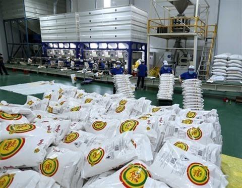Le Vietnam a exporte deux milliards de dollars de riz hinh anh 1