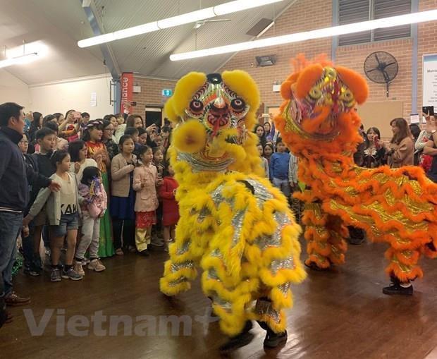 Fete de mi-automne aux enfants vietnamiens en R.tcheque et en Australie hinh anh 1