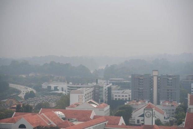 Singapour : la qualite de l'air est la plus basse depuis des annees hinh anh 1