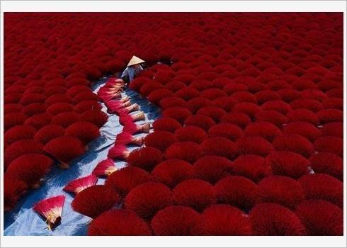 Quatre photos du Vietnam dans le Top 50 mondial 2019 hinh anh 4