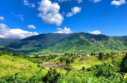 L'ecotourisme fait son chemin au village de Kieu hinh anh 1