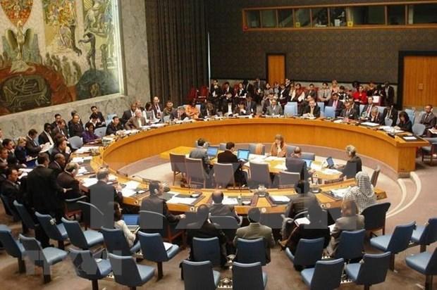 Vietnam: 42 ans d'adhesion a l'ONU hinh anh 1