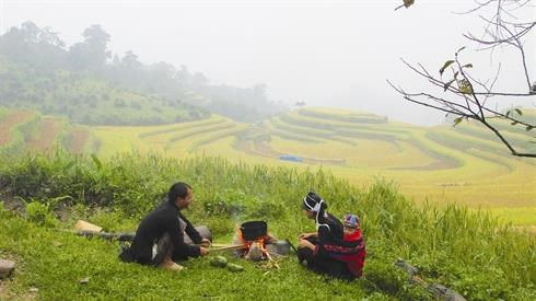 Trek dans les rizieres en gradins de Hoang Su Phi hinh anh 2