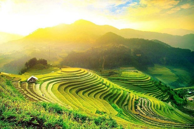 Trek dans les rizieres en gradins de Hoang Su Phi hinh anh 1