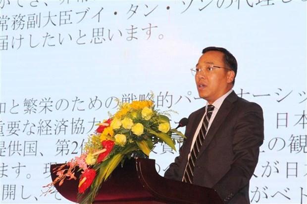 Renforcement de la cooperation entre le Tay Nguyen et le Japon hinh anh 1
