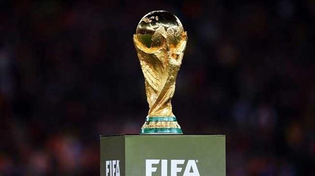 L'ASEAN prepare une offre conjointe pour la Coupe du monde 2034 hinh anh 1