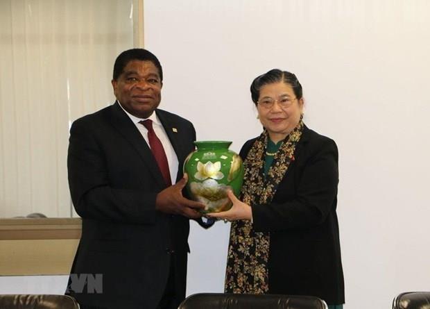 Le Vietnam plaide pour des liens accrus avec l'UIP et le Myanmar hinh anh 1
