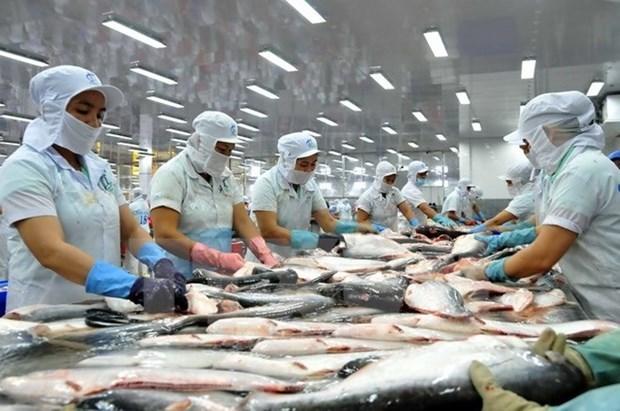 Les Etats-Unis reduisent les droits antidumping sur le panga vietnamien hinh anh 1