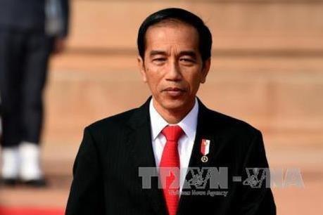 Indonesie: Joko Widodo annonce la liste du nouveau cabinet hinh anh 1