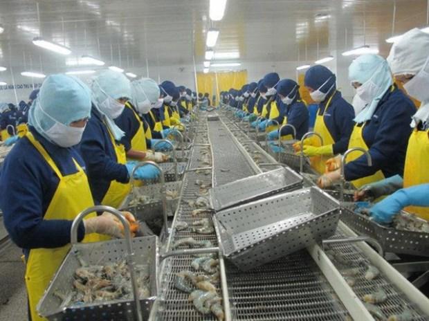 Les Etats-Unis, 2e debouche des crevettes du Vietnam hinh anh 1